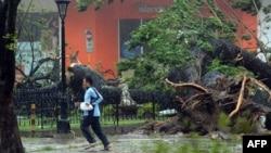 Құлаған ағаштық қасынан қашып бара жатқан адам. Филиппин, 8 қараша 2013 жыл.
