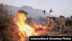محیطبانان در تلاش برای مهار آتش در منطقه حفاظتشده ماله گاله در استان فارس