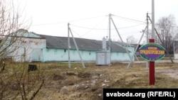 Беларускі саўгас «Прыдняпроўскі»