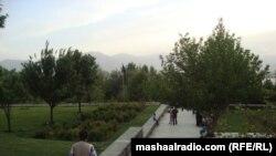 افغانستان: د کابل بابر بڼ