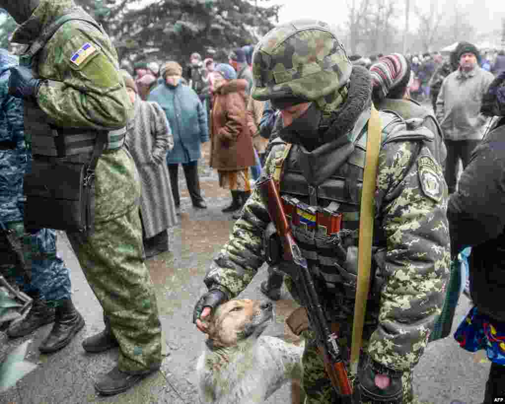 A Ukrainian serviceman pets a stray dog as convoys of buses leaves Ukraine's frontline town of Debaltseve to take besieged civilians to safety after both sides agreed a brief humanitarian truce.