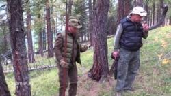 Путин радуется грибам и шишкам