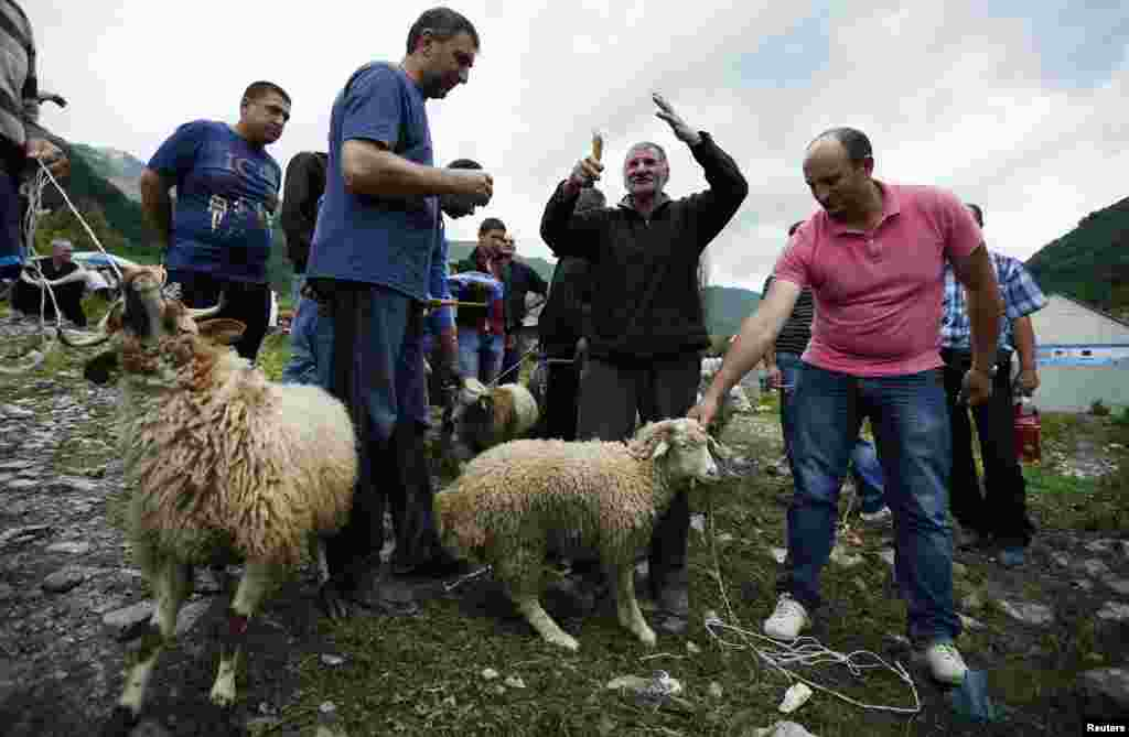 Georgia -- An elder (C) blesses sacrificial sheep during the religious holiday 'Lomisoba' in the village of Mleta north of Tbilisi, June 11, 2014. The holiday, which is a mix of pagan and Christian traditions, is celebrated annually by residents of the Ea