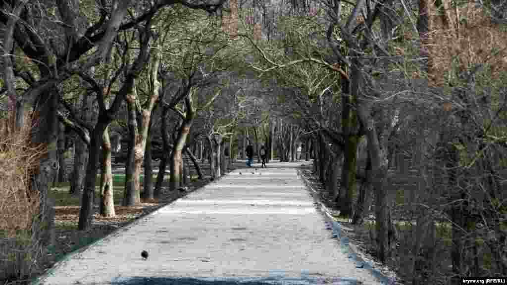 Реконструкция Гагаринского парка в Симферополе
