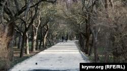 Горы грязи и реки асфальта: как реконструируют Гагаринский парк в Симферополе (фотогалерея)
