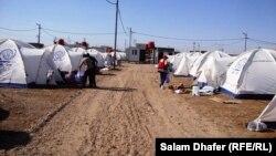 مخيم نازحين في العمارة