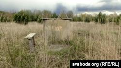 Калодзеж у Ка́менцы зарос безь людзей і вады