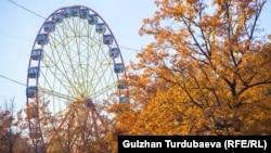 Осень в Бишкеке. Иллюстративное фото.