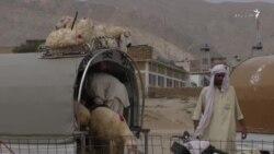 بلوچستان حکومت د قربانۍ څاروي په ارزانه بیه پلوري