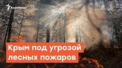 Крым под угрозой лесных пожаров | Радио Крым.Реалии