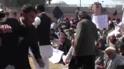 د خېبر پښتونخوا بلدیاتي نمانیدګانو احتجاج