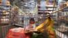 România a spus pas studiului UE privind dublul standard la alimente