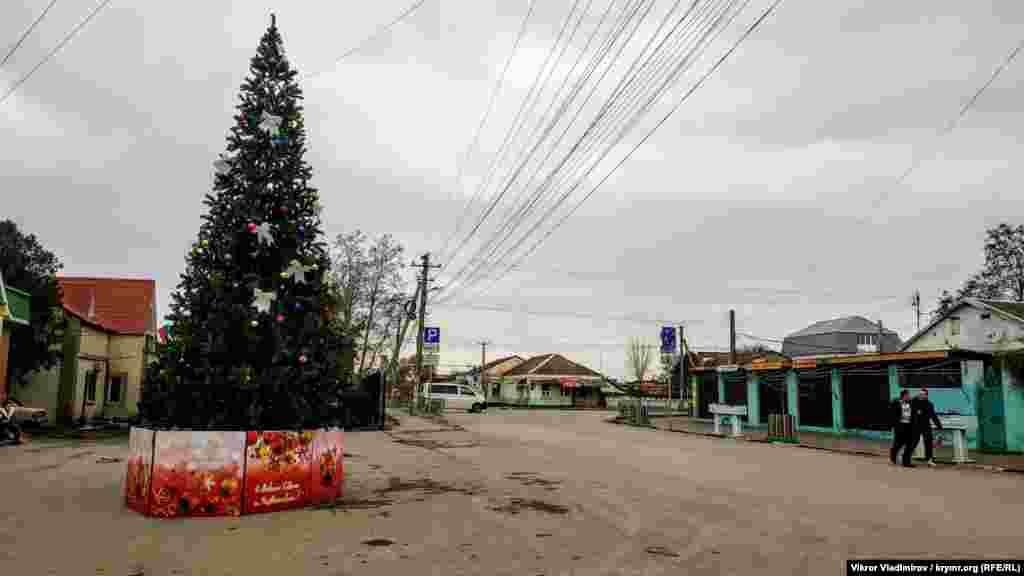 Головна ялинка у центрі Миколаївки