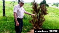 Андрэй Салаўёў каля зруйнаванай магілы