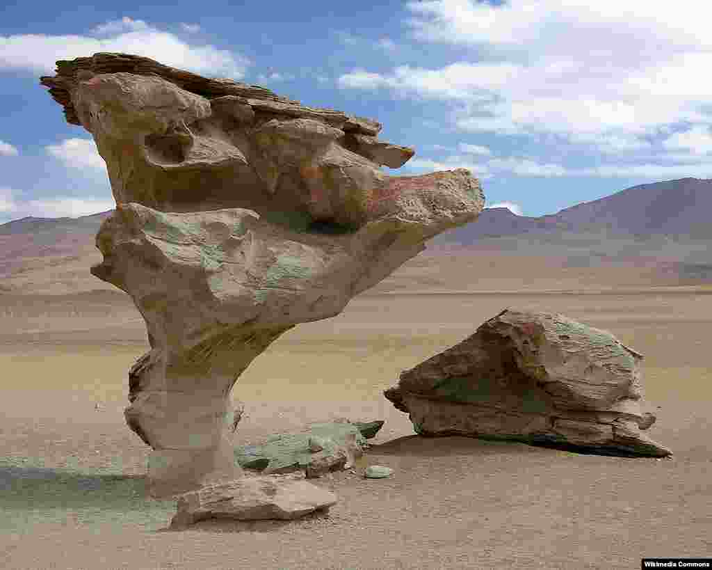 درخت سنگی (Arbol de Piedra) در استان سور لیپز، بولیوی