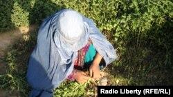این زنان اکثراً در مزارغ و باغها جهت جمعآوری سبزهها و اصلاح درختان به کار گرفته میشوند.