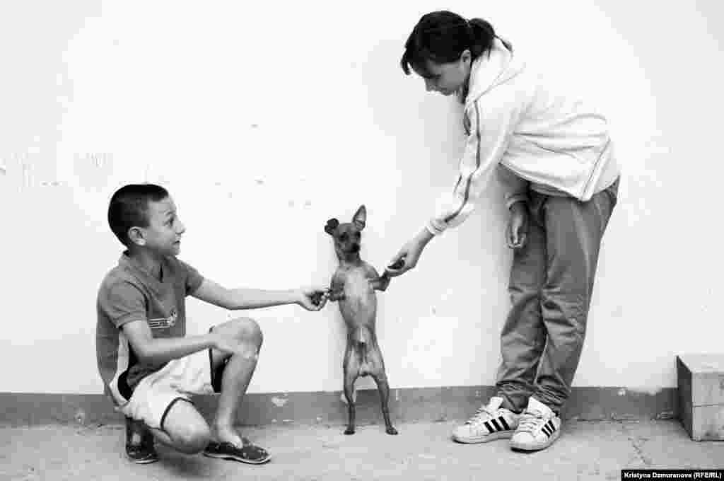 Rudolf and his sister, Marcela, play with their dog, known both as Aron and Pipiripi. Jana Cinova, their grandmother, took them in as foster children after her son, the children's father, left them.