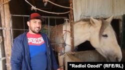 Ниёз Ниёзов содержит 12 самых разных пород лошадей