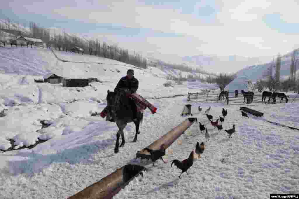 """A horseman sets off to take part in the Uzbek national game """"kopkari."""""""