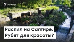Распил на Салгире. Рубят для красоты? | Радио Крым.Реалии