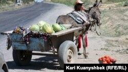 Женщина продает арбузы и помидоры на дороге от Сарыагаша до Шымкента. Иллюстративное фото.