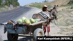 Сарыағаш-Шымкент күрежолы бойында жеміс пен көкөніс сатып тұрған әйел. 26 тамыз 2012 жыл. (Көрнекі сурет)