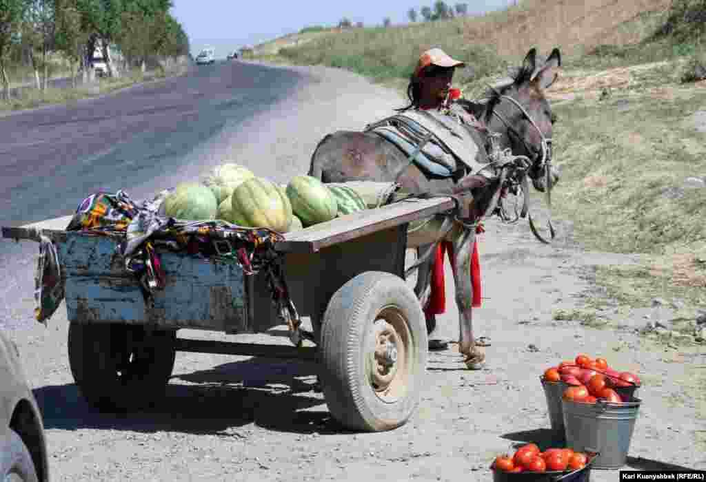 Жол бойында жеміс пен көкөніс сатып тұрған әйел. Оңтүстік Қазақстан , 26 тамыз 2012 жыл.