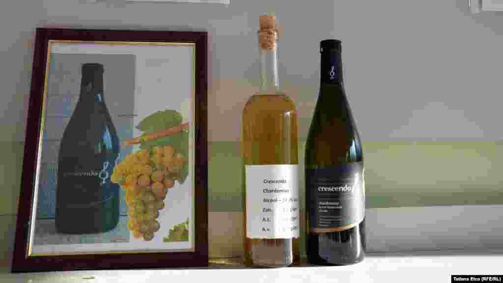 """""""Crescendo"""" sau despre ascensiunea științei vinului la Nisporeni..."""