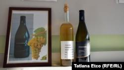 Moldova și vinurile ei - un reportaj la Nisporeni