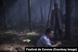 """Кадр из фильма Гаса ван Сента """"Море деревьев"""""""