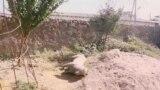 Tajik Villagers Butt Heads Over Cloven-Hoofed Statue (In Tajik)