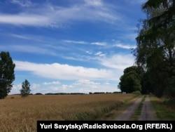 Саргинські поля