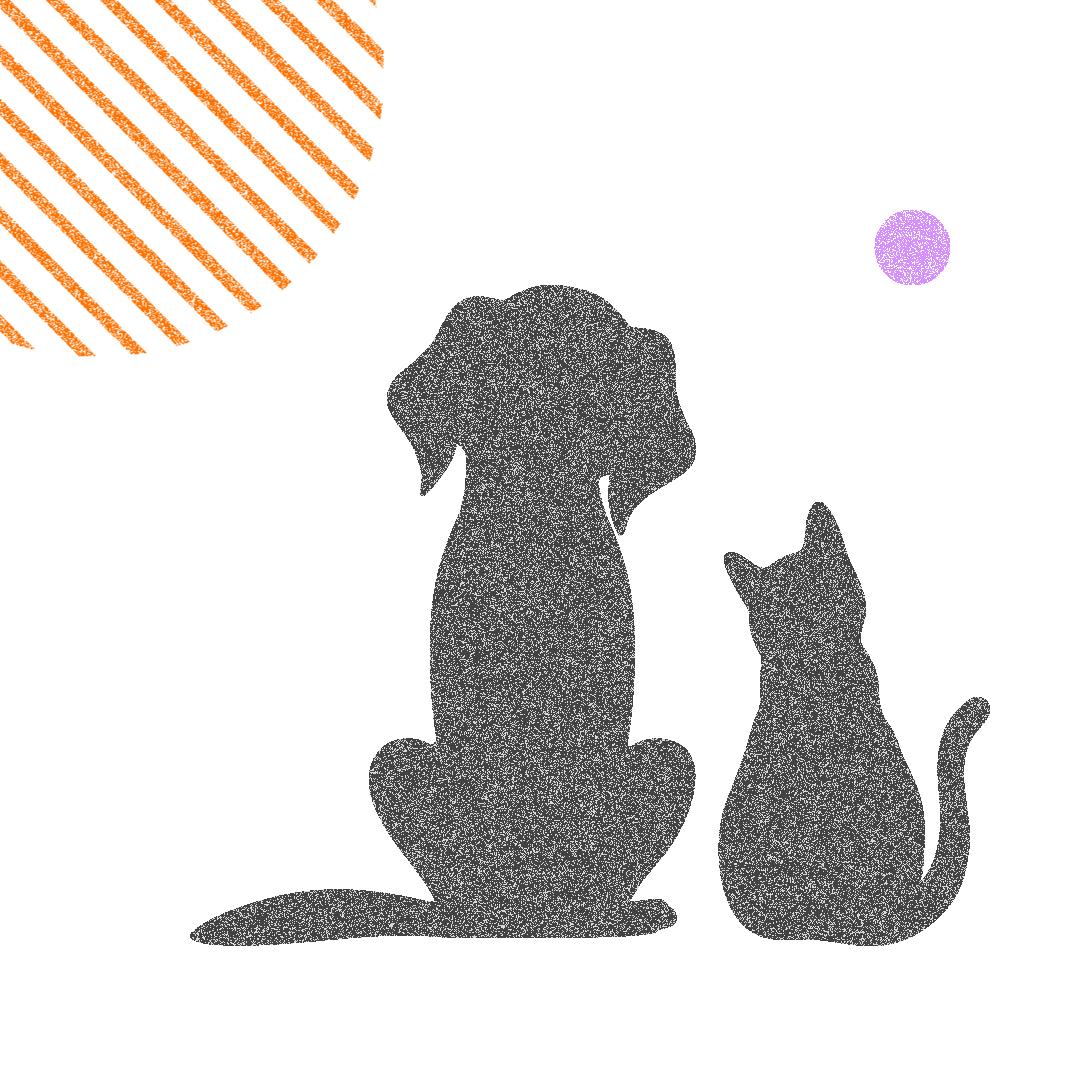 Яка депутатка внесла у декларацію «собаку-тапки-погризаку» і «котика-муркотика»?