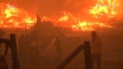 Від пожеж у Каліфорнії загинула щонайменше 31 людина (відео)