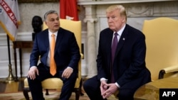 Hungarian Prime Minister Viktor Orban (left) and U.S. President Donald Trump meet in the Oval Office on May 13.