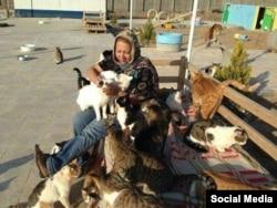 شعله رئوفی بنیانگذار پناهگاه گربهها در اشتهارد