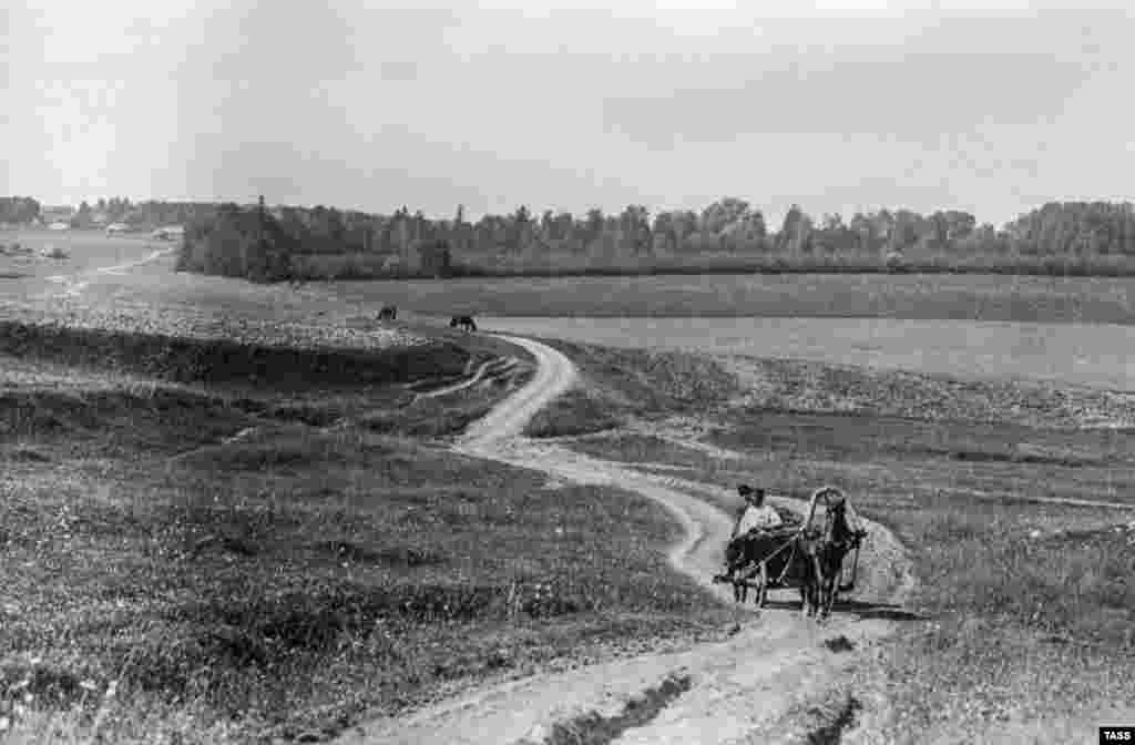 The road to Yasnaya Polyana, Tolstoy's home in the countryside south of Moscow, photographed in 1909.