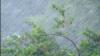 Тайфун суправаджаецца моцным ветрам і дажджом, ілюстрацыйнае фота