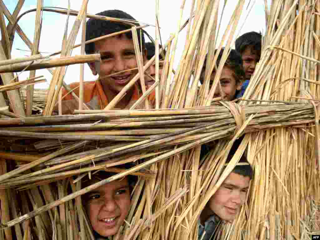 Iraqi children look through the dry reeds used to construct a home in the marshes southwest of Al-Basrah. - Photo by Essam Al-Sudani for AFP.