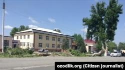 Вырубка чинар в Риштанском районе Ферганской области.