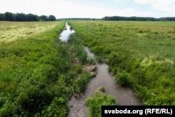 Ручай, які нясе брудныя воды ад ачышчальных збудаваньняў у Дзітву