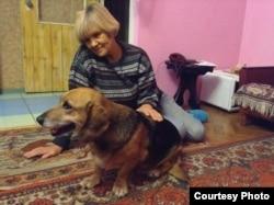 Собака Буся (фото надане волонтерами)