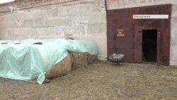 Як у Георгіївському облаштовують місце для проживання коней