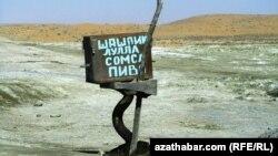 Atly ýöriş: daşoguzlylar Sarygamyş kölüne ugradylar