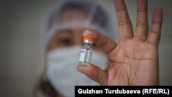 Медик в одной из поликлиник Бишкека держит в руках ампулу с вакциной Sinopharm. Иллюстративное фото.