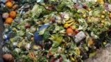 یکی از عمدهترین دلایل اتلاف مواد غذایی در مرحله تولید تا بازار، نبود زیرساختها و انبارهای مناسب و سرد است