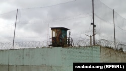 ЛПП ў Магілёве