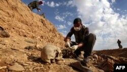 """مواطن يتفحص بقايا أيزيديين قتلهم مسلحو """"داعش"""" في قرب سنجار"""