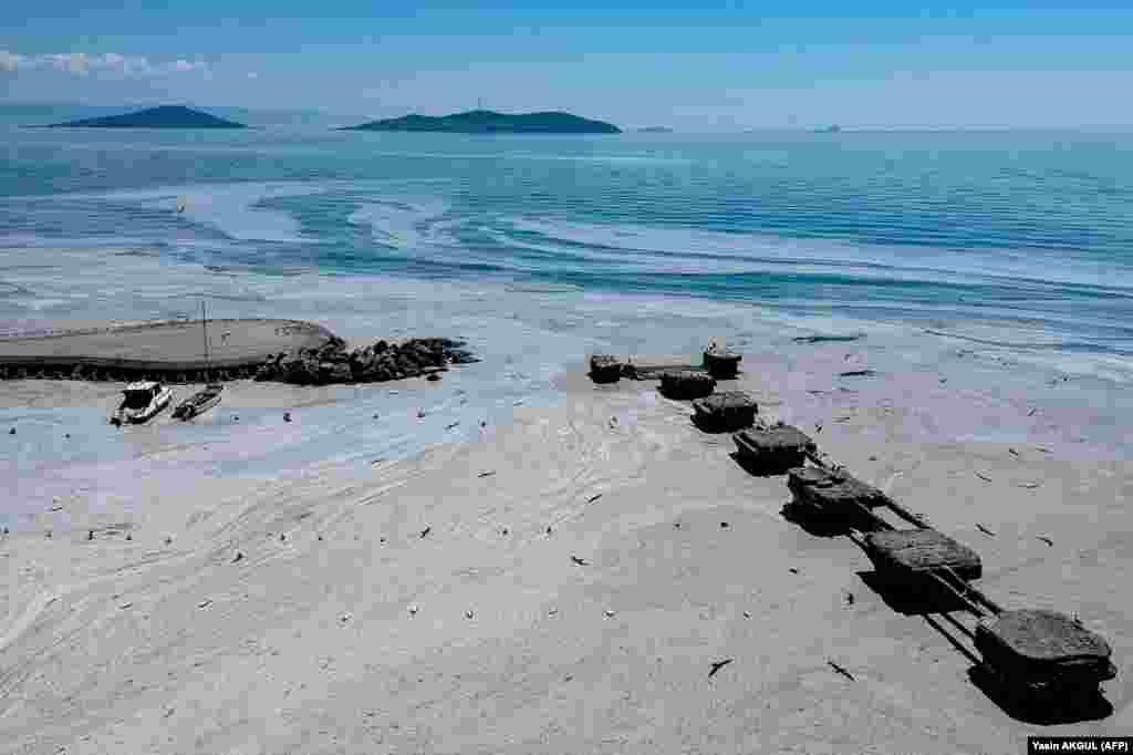 По мнению ученых, уменьшение содержания азота в море восстановит состояние воды до прежнего уровня