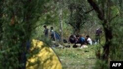 Imigrantët ilegalë në Suboticë të Serbisë afër kufirit me Hungarinë